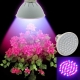 15W Augalų auginimo lempa