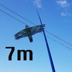 Paukščių baidyklė + kotas 5M
