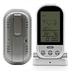 Skaitmeninis Termometras su zondu