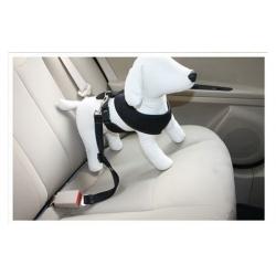 Augintinio saugos diržas automobilyje